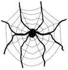 Spinnen und Monster